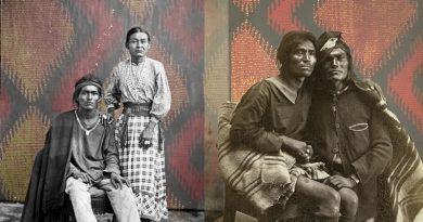 : a relação entre o terceiro papel de gênero e o patriarcado