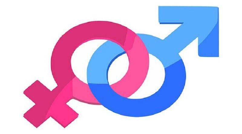 A armadilha da feminilidade e as novas masculinidades