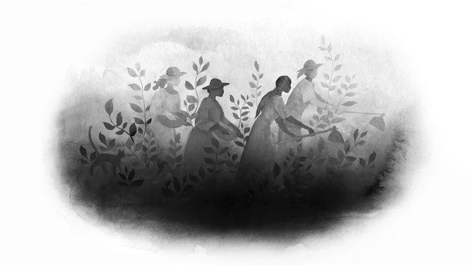 Breve histórico do ecofeminismo