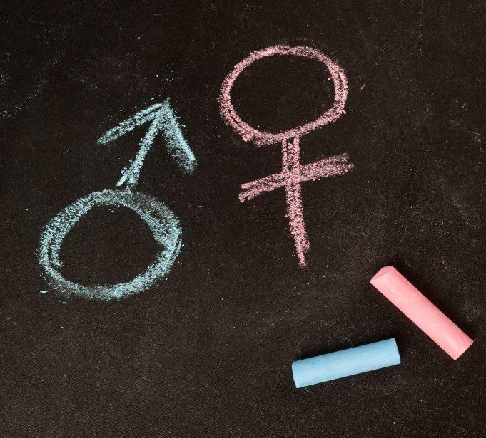 gênero e sexo diferença